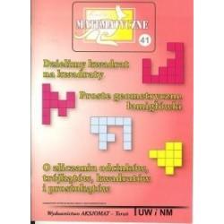 Dzielimy kwadrat na kwadraty, Proste geometryczne łamigłówki, O zliczaniu odcinków, trójkątów, kwadratów i prostokątów